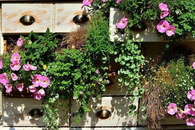 איך לעצב גינות גג ומרפסת